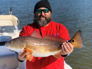 big Red Drum caught in New Orleans