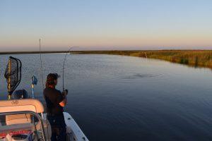 Lake Catherine Charter fishing