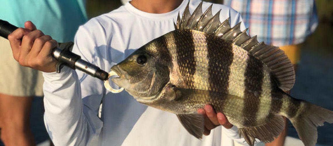 fishing-neworleans-large-sheepshead
